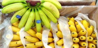bananas europe direct lucenec